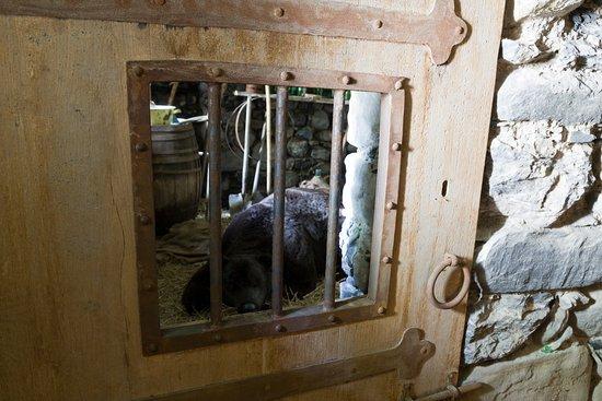 Seyne les Alpes, France: Animatin de l'ours dans sn donjon, avec maquette ours grande taille et bruitages
