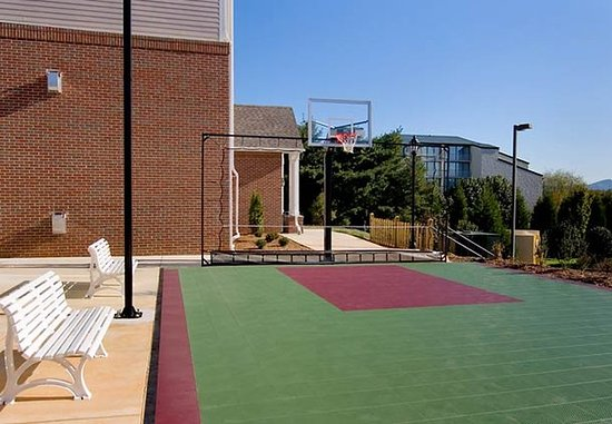 Residence Inn Roanoke Airport: Sport Court