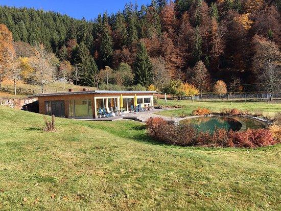 Beste Spielothek in Bonndorf im Schwarzwald finden