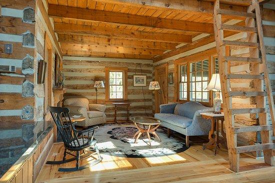 Quicksburg, VA: Log cabin living room