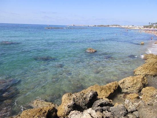 Paphos Gardens Holiday Resort: Здесь камни, а подальше - песок. Кому, что нравится
