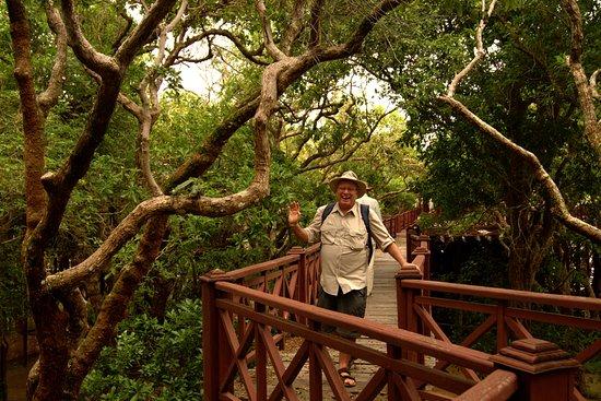 Angkor Park Tour