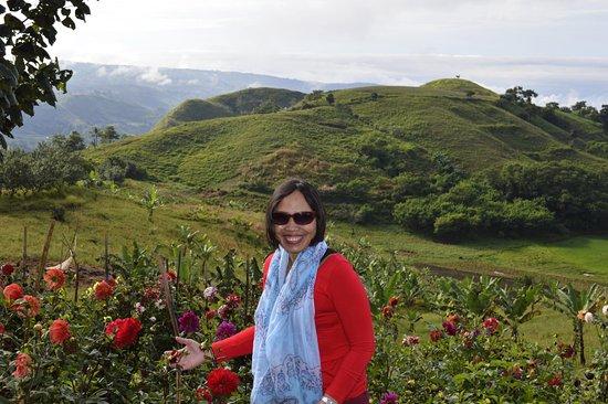 มินดาเนา, ฟิลิปปินส์: Beautiful flowers!