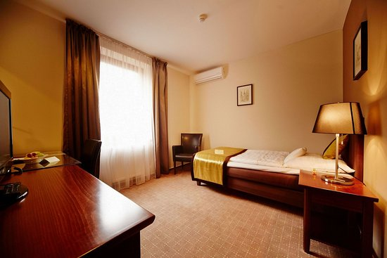 Bristol Hotel: Single room
