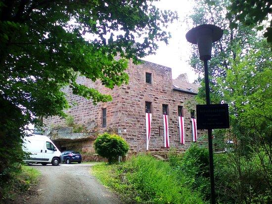 Burg Wilenstein-Flörsheim