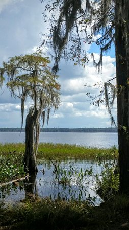 Lake City, FL: Ocean Pond