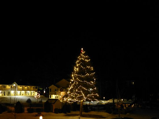 Golden Gables Inn: Giant decorate Xmas tree in rear-center court.