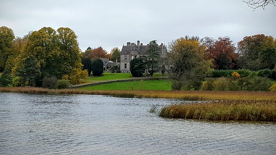 Castle Leslie Estate: 20161029_131145_large.jpg