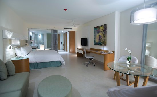 Hilton Puerto Vallarta Resort: I king Ocean Front Junior Suite