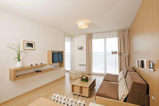 Carrieres-sur-Seine, França: Appartment 2P - living room