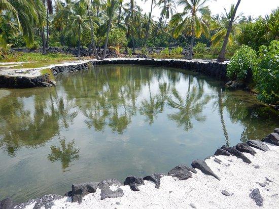 Honaunau, Hawaje: Fish pond