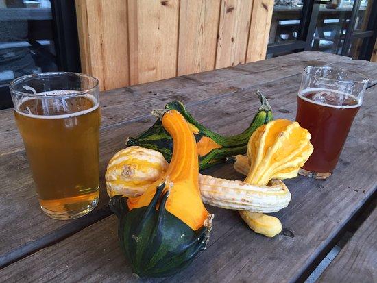Suttons Bay, MI: Pumpkin Smash Face is a good beer!