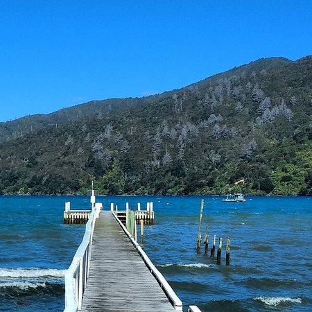 Anakiwa, Nueva Zelanda: IMG_20161028_132304_large.jpg