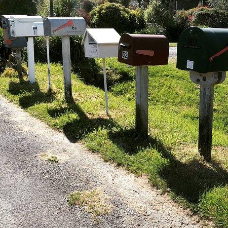 Anakiwa, Nueva Zelanda: IMG_20161028_132330_large.jpg