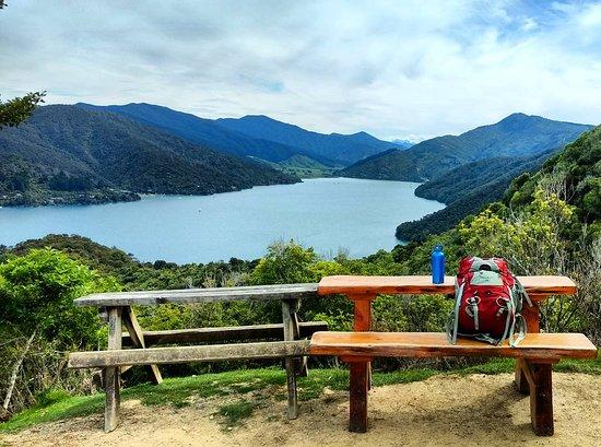 Anakiwa, Nueva Zelanda: IMG_20161029_070139_large.jpg