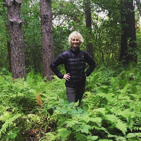 Charles River Peninsula : fern gardens before the fall