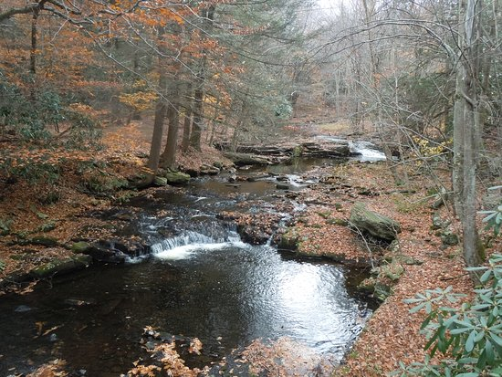 Cresco, PA: The stream and small falls at Holley Ross Pottery!