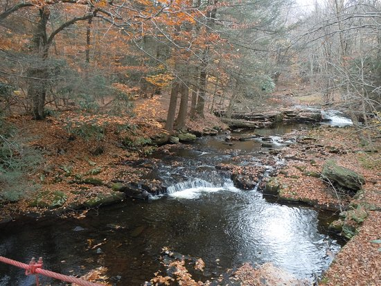 Cresco, PA: The stream and falls at Holley Ross Pottery in Autumn.