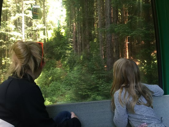 Klamath, แคลิฟอร์เนีย: Gondola Ride