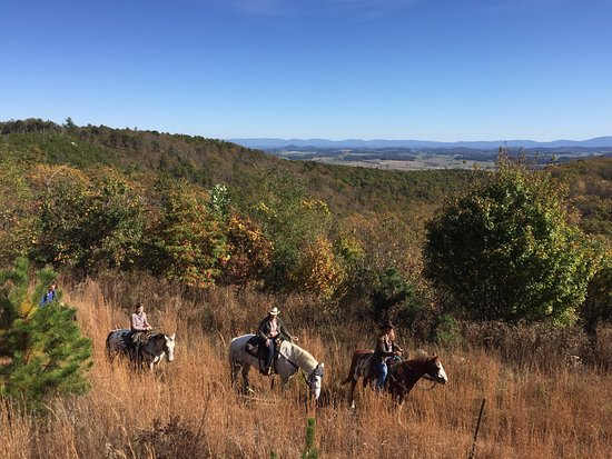 North Mountain Outfitter: 3rd visit to North Mountain Horse Ranch..check these out