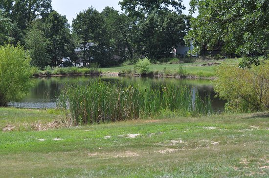 Gravois Mills, MO: 1/2 acre fishing pond