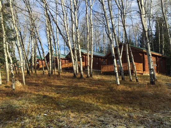 Bridge Lake, Kanada: Cabins