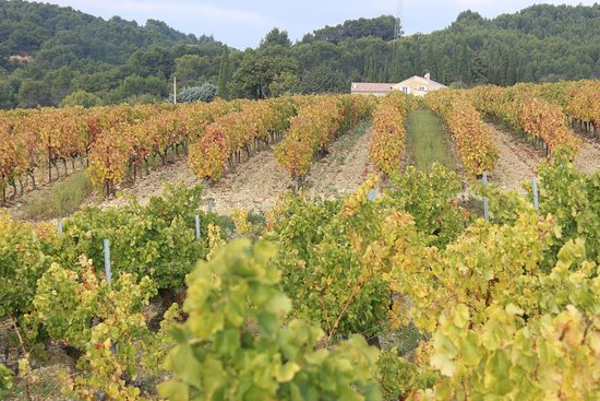 Rasteau, Frankrike: La Luminaille dans son écrin de vignes colorées
