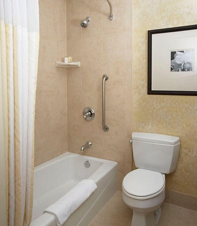 Hilton Garden Inn Savannah Midtown: Accessible bathtub