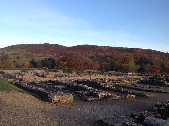 Hexham, UK : Vindolanda in Autumn sunshine