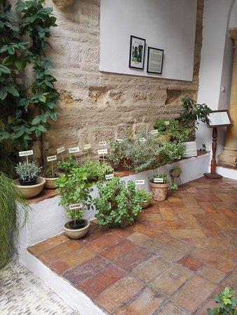 Sous sol photo de casa de las cabezas patios de leyenda for Decoracion de patios de casas