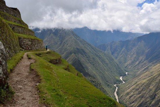 Llama Path張圖片