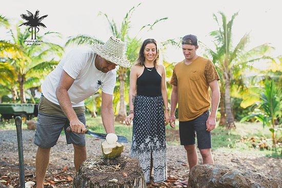 Punakea Palms Coconut Farm
