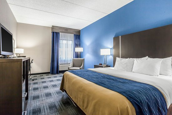 hampton inn and suites cleveland airport middleburg. Black Bedroom Furniture Sets. Home Design Ideas