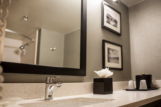 holiday inn princeton updated 2017 prices hotel. Black Bedroom Furniture Sets. Home Design Ideas
