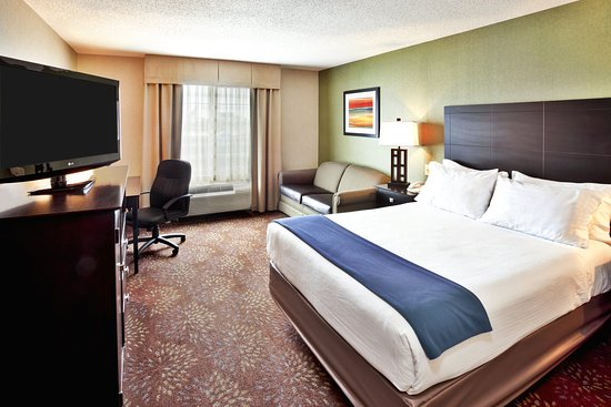 Woodhaven, MI: 1 King Bed 1 Room Suite Sofa Bed