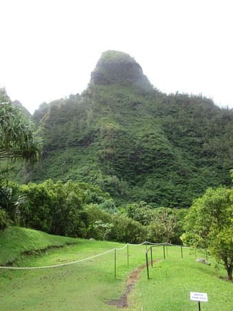Limahuli Garden Trail - Picture of Limahuli Garden and Preserve ...