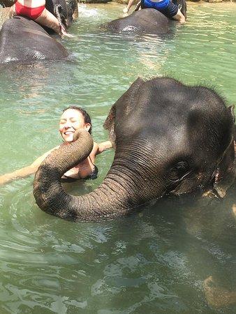 Elephant Kisses xx - Picture of Phang Nga Elephant Park ...