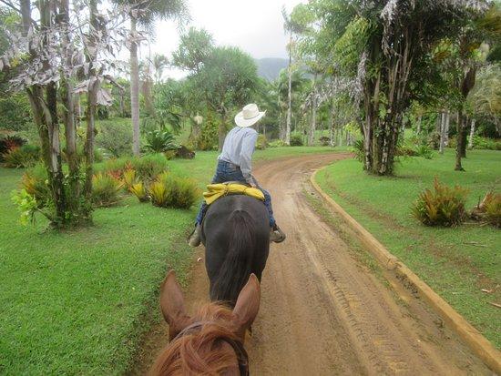 Silver Falls Ranch Greg Leading