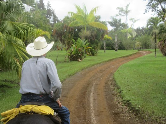 Kilauea, Hawaje: Silver Falls Ranch On the Trail