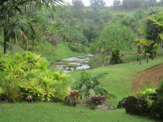 Kilauea, Hawái: Silver Falls Ranch Stream Near Trailhead