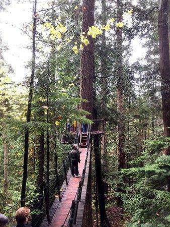 North Vancouver, Canadá: photo1.jpg