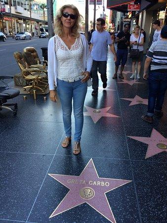 VIP Tours of California: photo4.jpg
