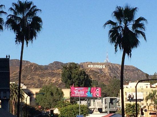 VIP Tours of California: photo6.jpg