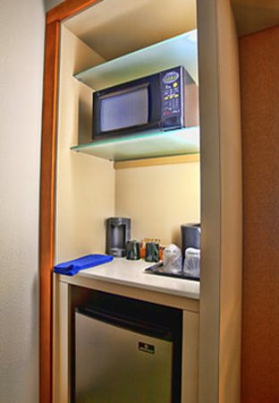 SpringHill Suites Tampa North/I-75 Tampa Palms: Suite Kitchenette