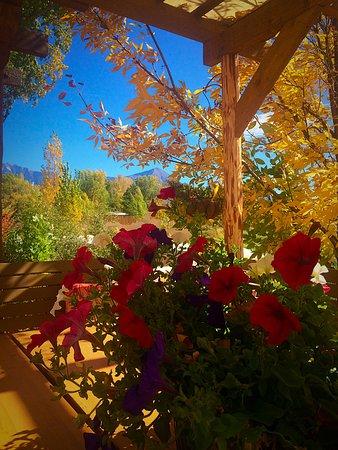 Paonia, Colorado: Deck View