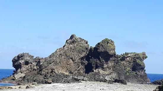 Lion Couple Rock