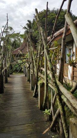 Sapulidi Resort..asli di sawah