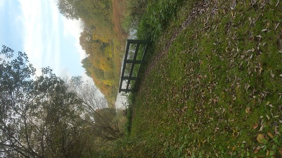 Tullow, Irlanda: Altamont Gardens
