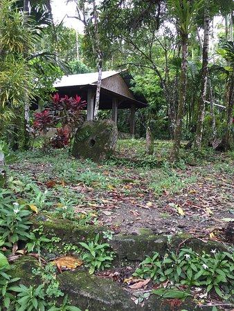 Colonia, Mikronezya Federal Devletleri: photo9.jpg