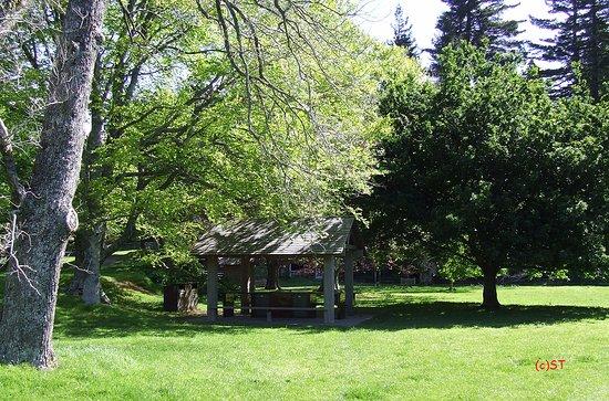 Tupare Park: Green Picnic Flat